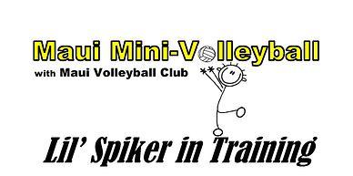 mini-volleyball